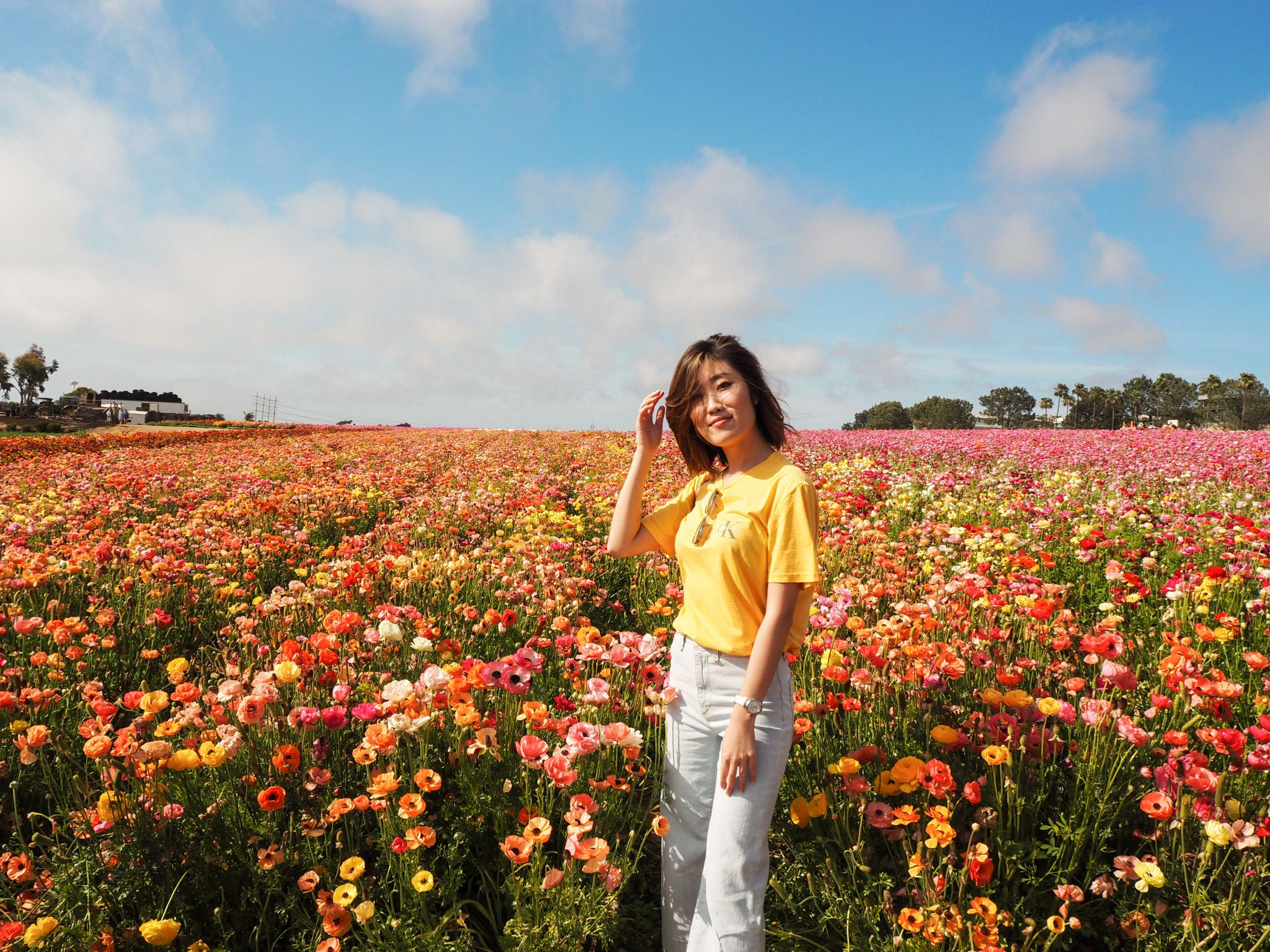 My Spring Uniform // The Flower Fields